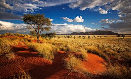 La Namibie, une contrée passionnante d'Afrique australe