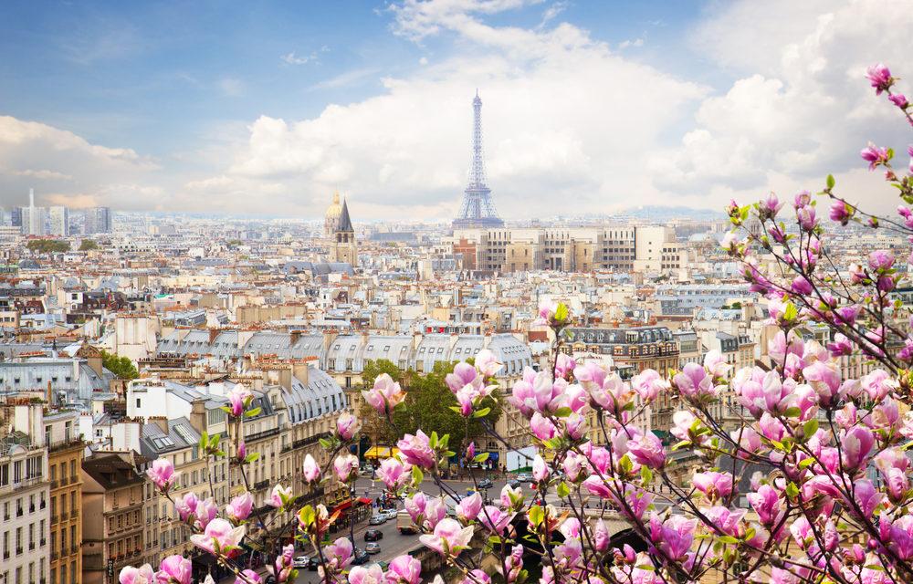 Votre artisan vitrier à Paris