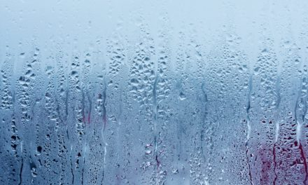 Batiprosec traitement humidité