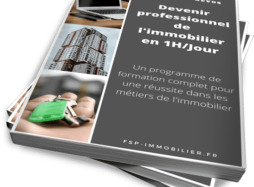 FSP-Immobilier