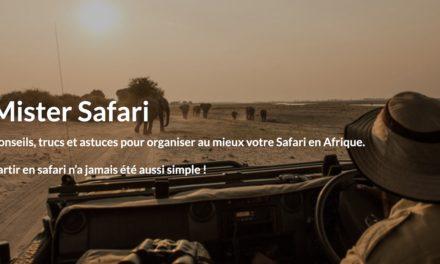 Mister Safari